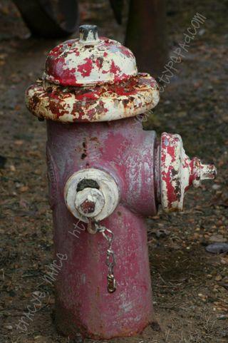 ODM_hydrant